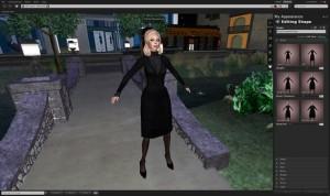 图1,虚拟情境计算机屏幕截图,